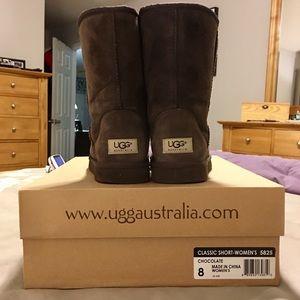 Uggs - Women's Classic Short Brown (w/box)